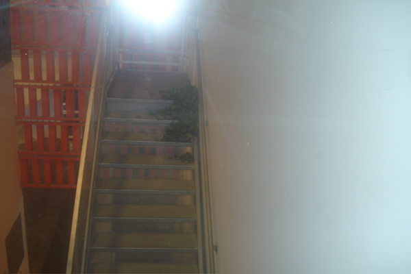 Oh, my terrible picture and you can hardly see the leaves on the stairs! You will have to go see it in person.