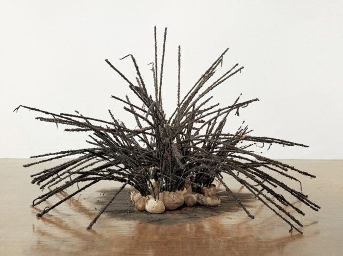 David Hammons, Untitled (1992)