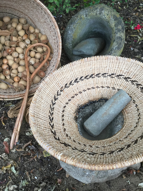 """These two work baskets were created with the support of a second Creative Work Fund grant. The bottomless """"Pechump Tiprin"""" or hopper basket, was adhered to a mortar's rim with a thick ring of tar. The basket holding acorns is a """"Shiiwen"""" or carrying basket. These were the first of their kind to be made in about 150 years. Photo by Linda Yamane."""
