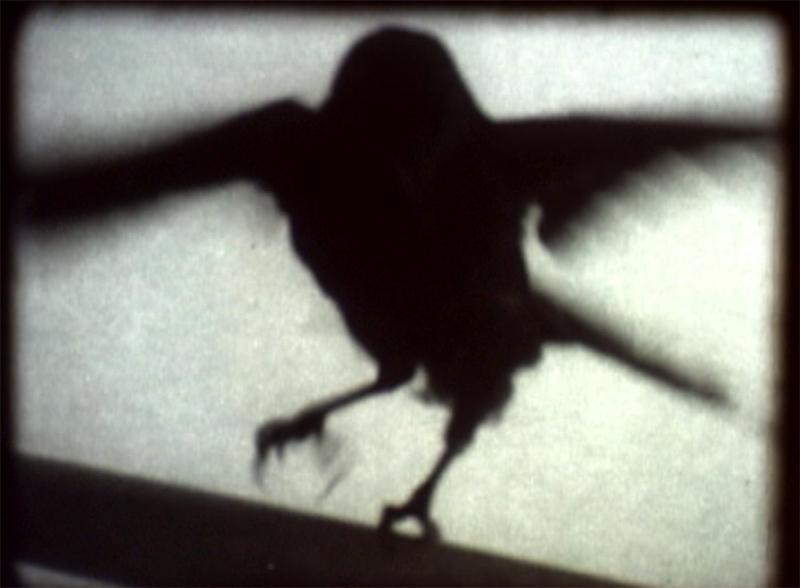 Vanessa Renwick. 9 Is A Secret, 2002 (stills), 16mm & video, 6 minutes. Courtesy the artist.