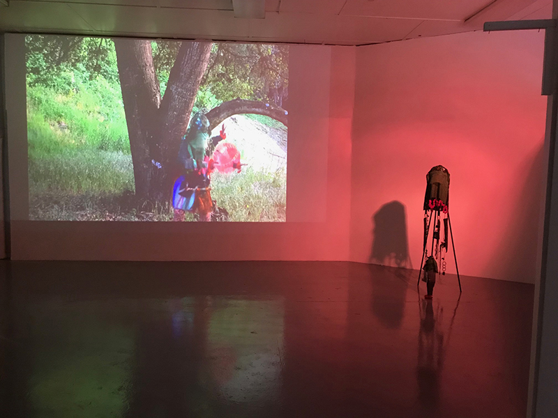 Installation shot of Dionne Lee and Nkiruka Oparah'sMeeting Place, 2018.