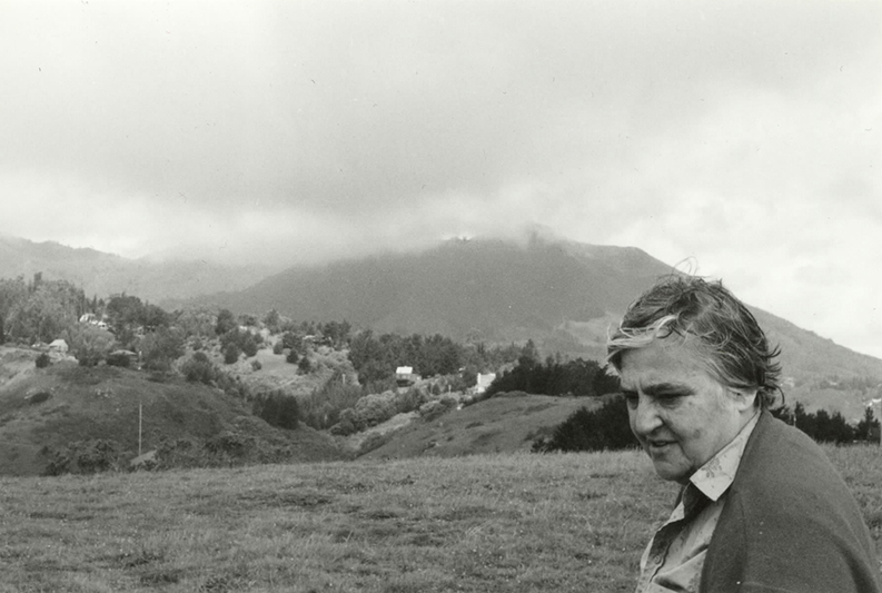 Etel Adnan on Mount Tamalpais, California. Courtesy of the artist.