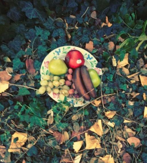 Fruit plate, Gowanus.