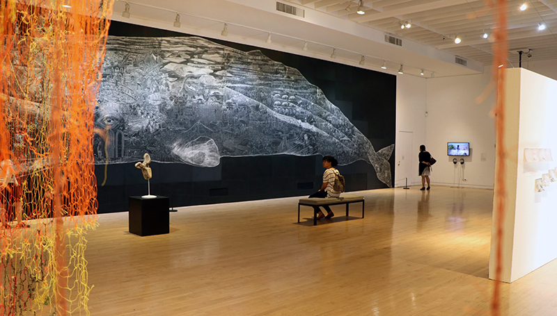 Here is the Sea, in the main gallery at the Richmond Art Center, 2019. Here is the Sea brought together artworks that use the ocean and its coasts as a site for investigating the fraught relationship between humans and nature. The exhibition featured work by nine local artists and groups, and included Jos Sances' lifesize scratchboard drawing of a sperm whale and Dimitra Skandali's site-specific installation made from discarded fishing nets and seaweed.