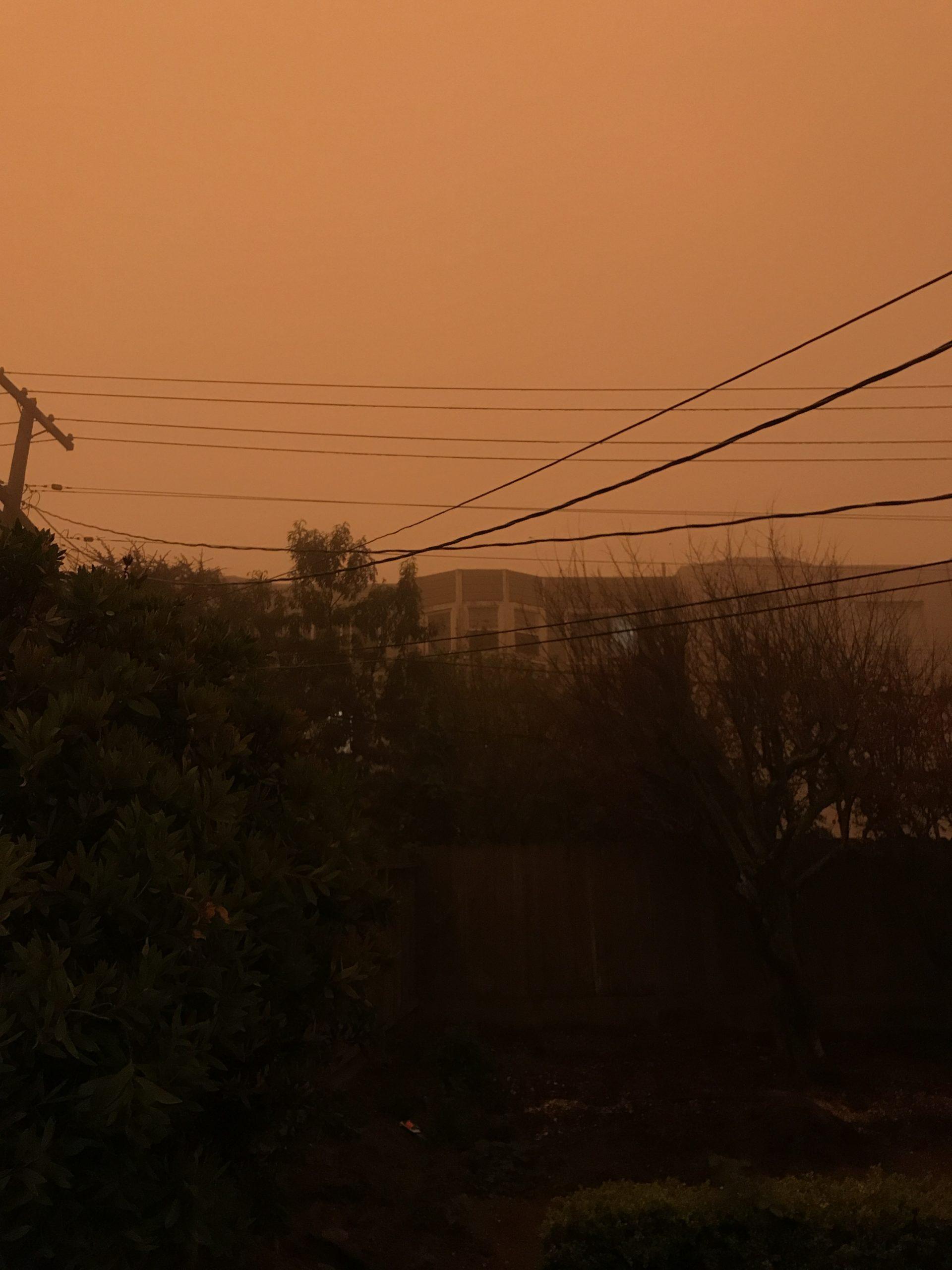 Shaina Lopes picture of orange sky